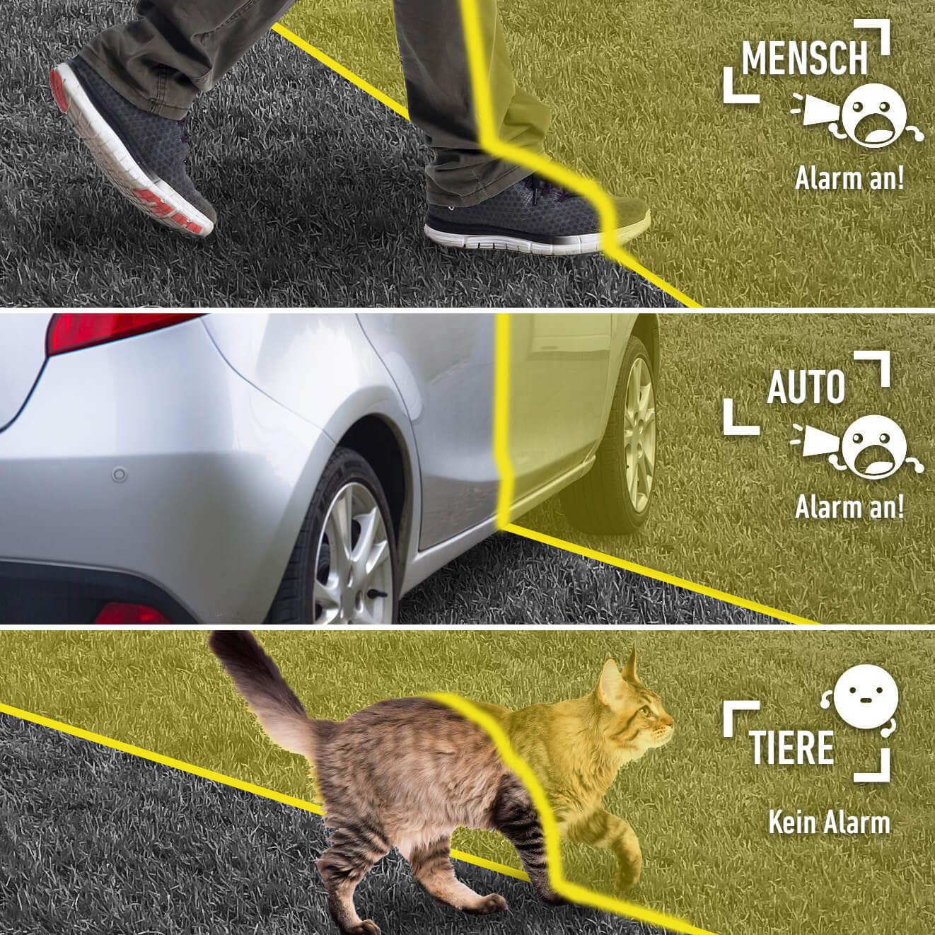 Hikvision Acusense unterscheidet zwischen Mensch, Fahrzeug und Tier